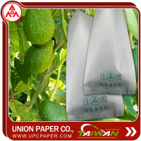 Avocado protection bag Grow Bags For Fruit