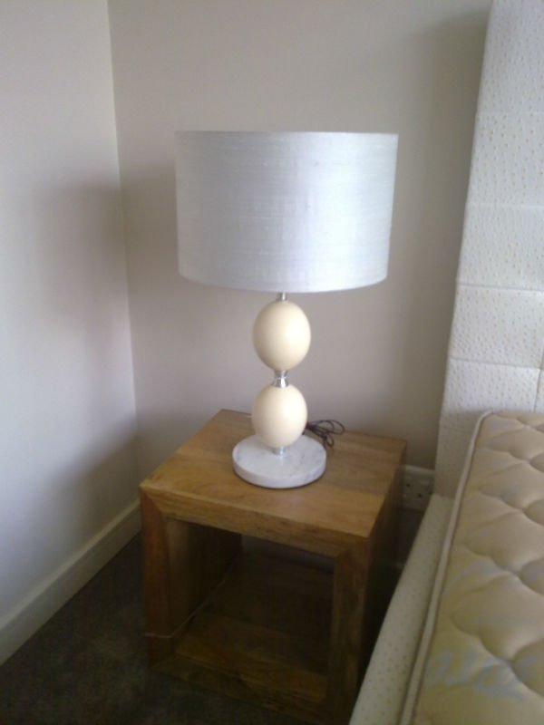 Ostrich Egg Silk Lamp