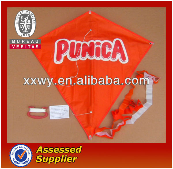 Customized Advertising Funny Kitesurfing Kites