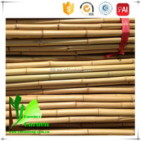 Bamboo Poles/ Bamboo Canes/ Bamboo Sticks for Flag
