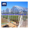 High Quality Agricultural Greenhouses Used Sale