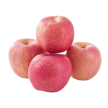 Wholesale Prices Fresh Fuji Apple Fruit Exporter In China 20Kg/Carton