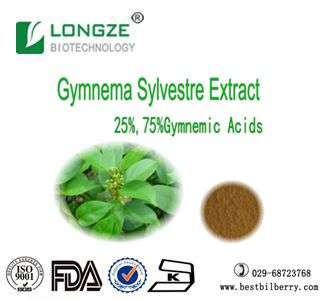 Longze Biotechnology supply gymnema sylvestre extract powder with good uses