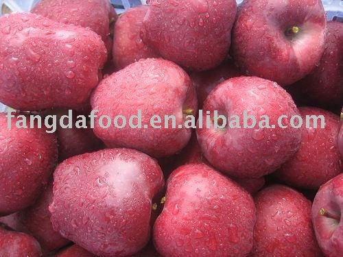 red delicious china huaniu apples
