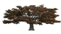 Guanghzou high simulation factory price artifcial oak tree