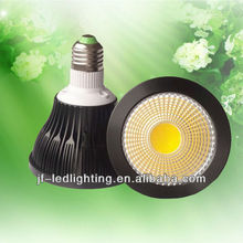 PAR30 CE&RoHS COB LED Spot Light IP65