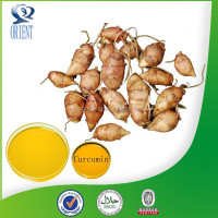 New Arrival Natural turmeric root tuber extract