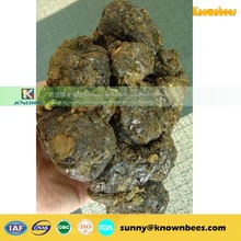 brazilian green bee propolis wholesaler