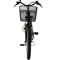Eagle Green Evs Electric Bike For Adults