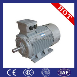 standard three phase electric motor