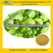 100% Natural Centella Asiatica Extract Powder From GMP Manufacturer