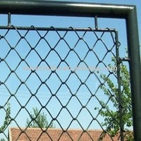 Galvanized & PVC Coated Chain Link Fence(manufacturer)