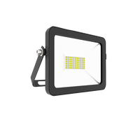 30W 120LM/W Knuckle Mount Led Flood Light with 10 years Warranty
