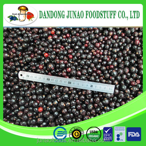 Best selling natural black currant juice with competitive price