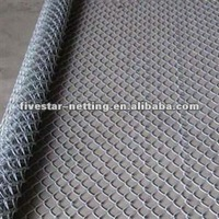 hot dipped galvanized chain link fence/ pvc coated wire mesh fence