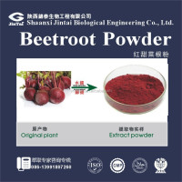 watersoluble 10:1 bulk fresh red beet root extract powder