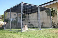 large strong metal dog crate house