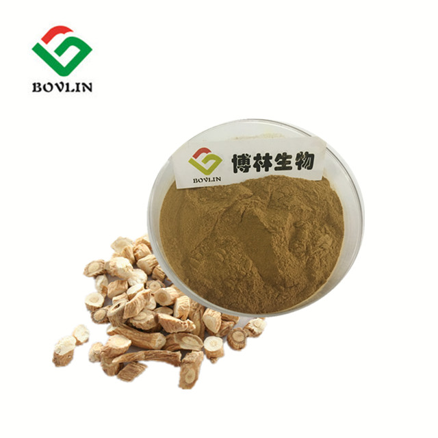 Factory Supply Antibacterial Radix Isatidis Extract Powder