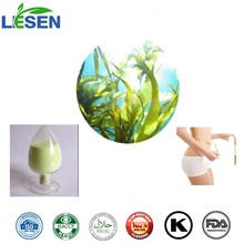 Top Quality Weight Loss Ingredient Brown Algae Extract Fucoxanthin Fucoidan