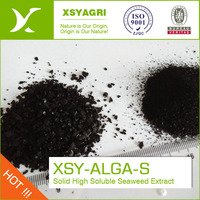 XSY Manufacture100% Pure Nature Seaweed Extract Acid 18%