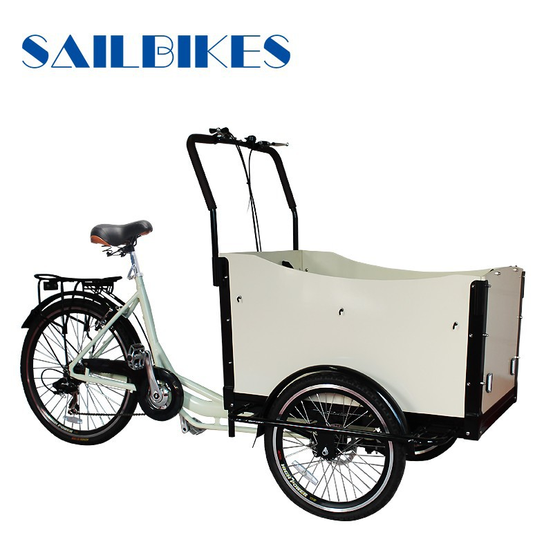Elegant shape electric cargo bike