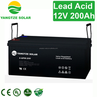 Free maintenance 200 volt battery