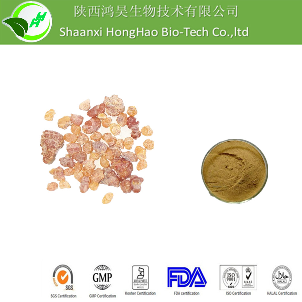 ISO/KOSHER/GMP Best Price 100% Natural organic boswellia serrata extract powder