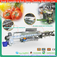 Fruit and Vegetable cleaning Sorting Machine for Selection and preparation of fruits machines line 2016