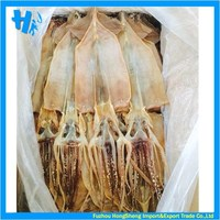 Best price for dried illex squid on sale