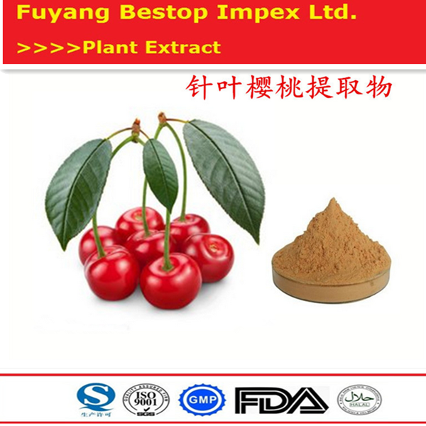Zhen Ye Ying Tao Pure Best Quality Acerola Cherry Extract Powder