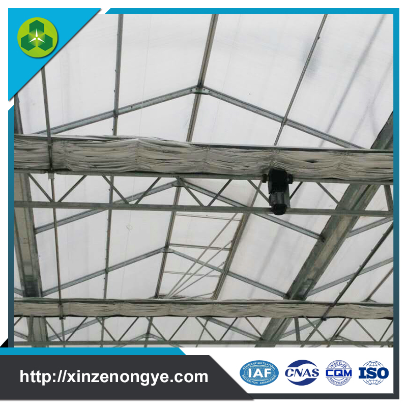 Shandong Greenhouse