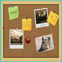Best Selling Cork Notice Board