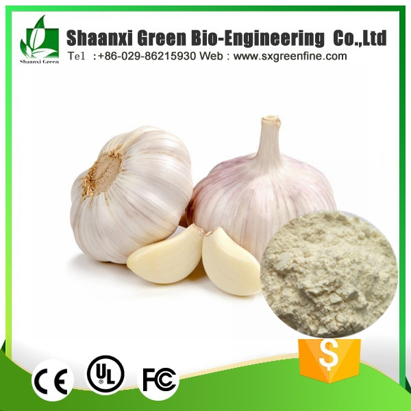 OEM&ODM Free samples 100% Natural Freeze Dried Garlic Powder factory
