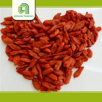 Brand new goji supplier with high quality hot sale dried goji berry