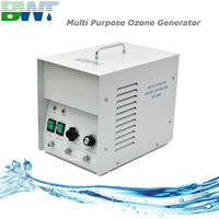 3 g/h New mini vegetable and fruit ozone water purifier with CE certificate