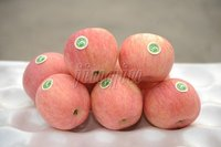 chinese fresh red juicy fuji apple