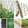 Natural Bamboo Trellis for Garden