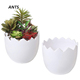 Creative Eggshell Shape White Ceramic Indoor Succulent Planter Pot