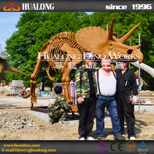 Museum High Quality Artificial Fiberglass Golden Dinosaur Skeleton