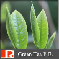 Green tea Extract (green tea PE) Polyphenols, EGCG ,Catechin