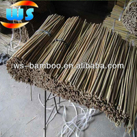 Timber Raw Materials/Farm Products/Bamboo