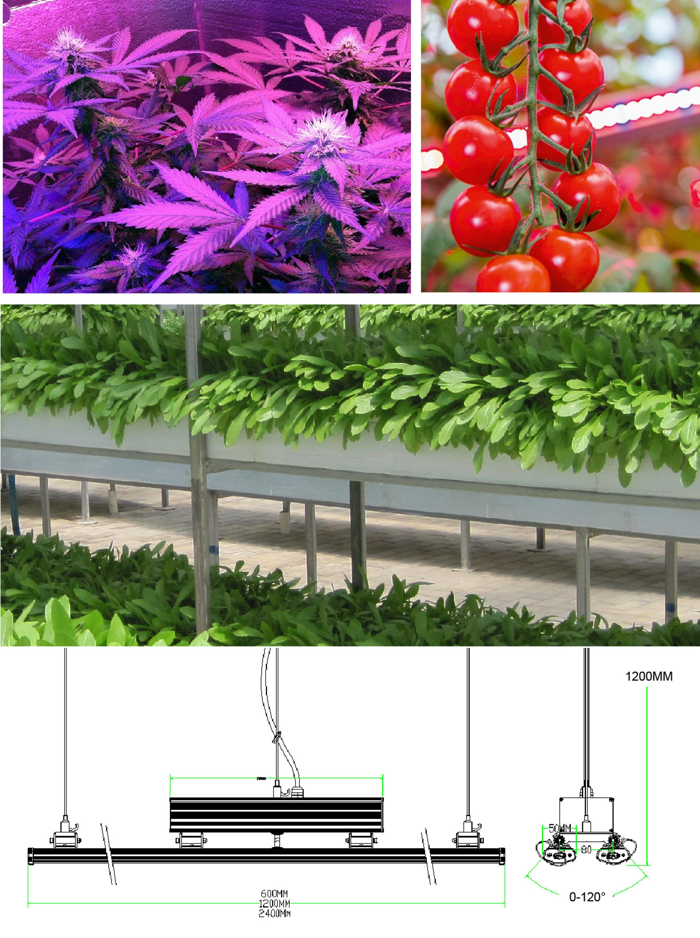 1.2m led grow bar light with lumileds led for hydroponics vertical growing for indoor growing