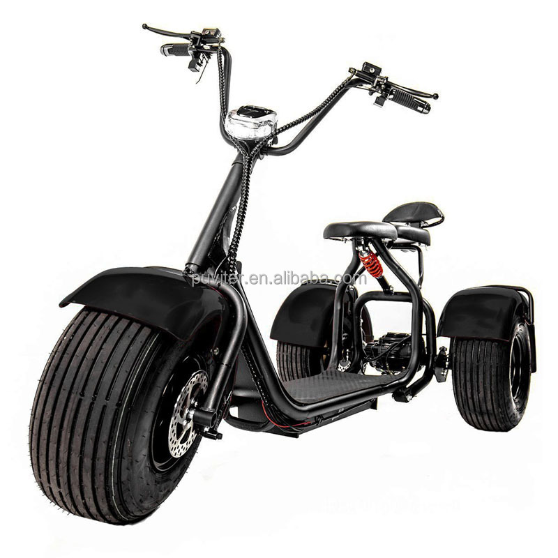 New Design electrical scooter three wheel citycoco motorcycle electric bicycle(C11)