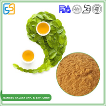 Newest technology 95% through 80 mesh water soluble egcg polyphenols extract p.e green tea