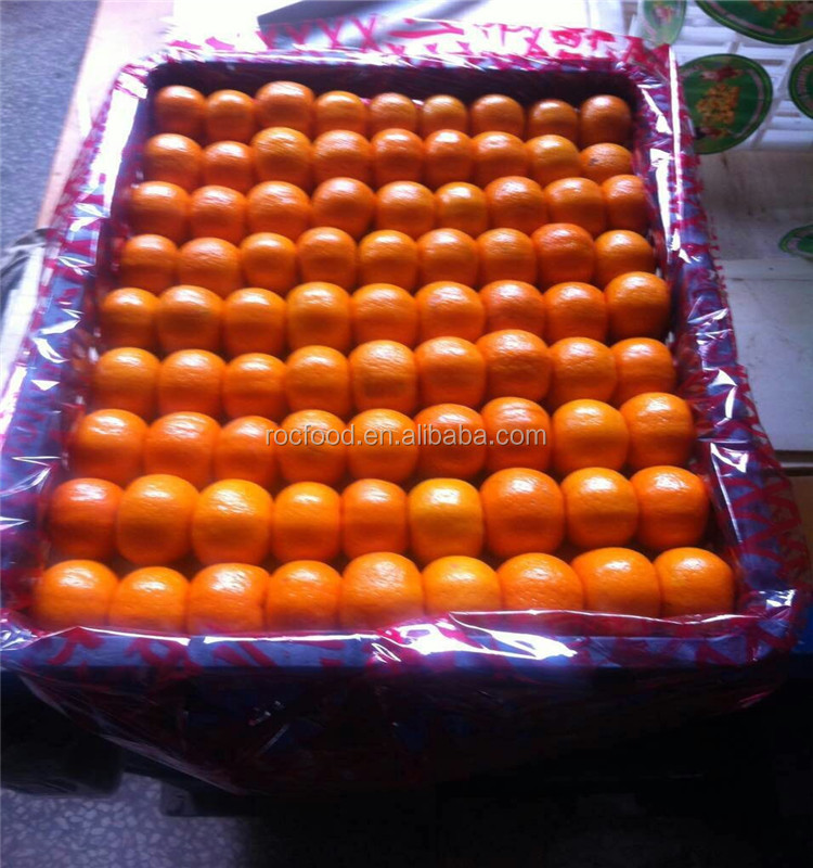 Citrus Fruit Product Type and Nanfeng Mandarin Orange fresh kino mandarin