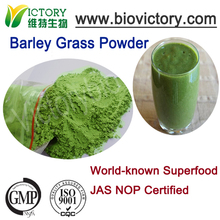 200 Mesh Organic Superfood Powder Form Green Barley