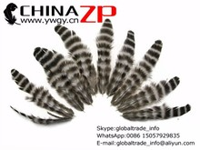 Plumage Crafts supplier in China cheapest Dyed bulk Natural Grizzly Hen Loose Feather