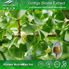 Provide high-quality Natural Ginkgo Biloba Extract/ Ginkgo Biloba P.E. Ginkgoflavon Glycosides24%, Ginkgo Leaf Extract