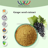 Grape extract,free sample HACCP KOSHER FDA China supplier herbal medicine 95% grape seed extract,OPC procyanidin