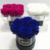 Wholesale Round Acrylic Rose Flower Box